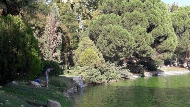 Lago de la Casa de Campo.