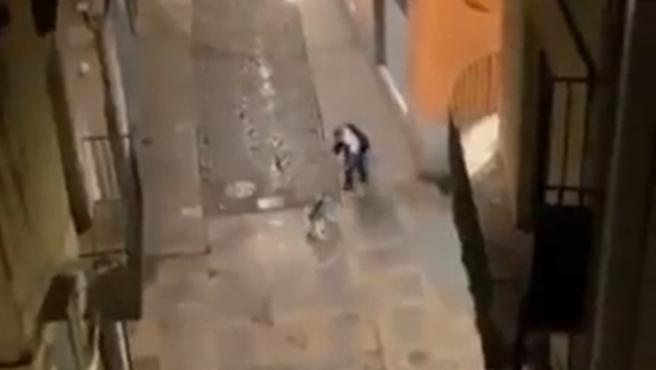 Imagen del vídeo del hombre al que buscan por pegar a un perro en Girona.