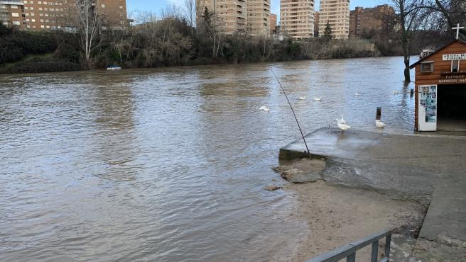 El caudal del río Pisuerga supera los 305 metros cúbicos por segundo este miércoles.