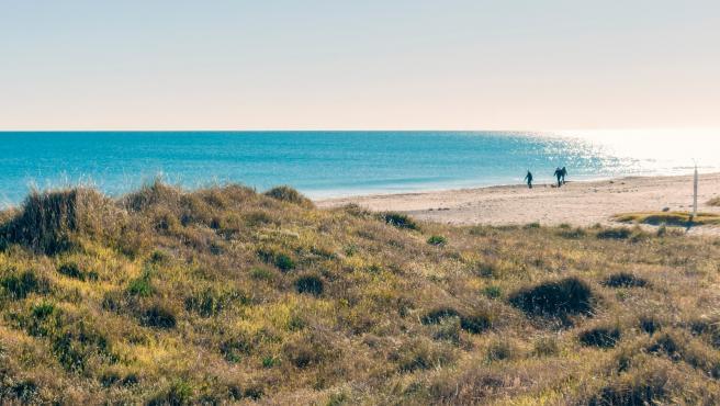 Imagen del litoral de la Comunitat Valenciana.