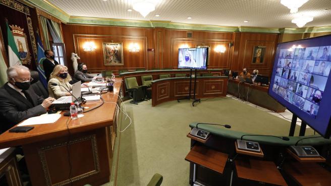 """El Pleno de Marbella pide al Gobierno una participación """"real y justa"""" en fondos de UE contra el COVID"""