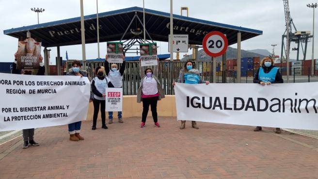 Animalistas protestas en el Puerto de Cartagena