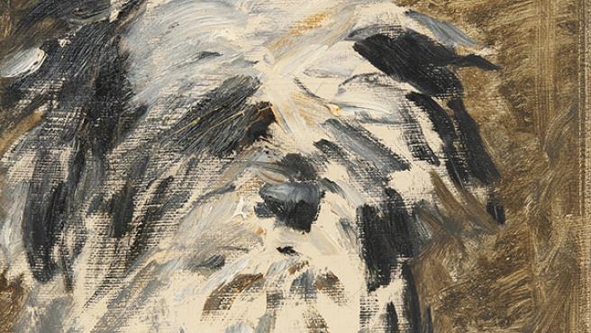 'Minnay' pintado por Manet.