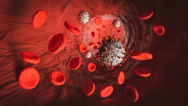 Sangre y coronavirus.