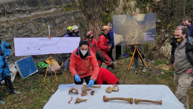La antropóloga Maitane Tirapu coloca sobre una mesa a la entrada de la cueva Errotalde I restos del 'hombre de Loizu', el cuerpo humano completo más antiguo hallado en Navarra.