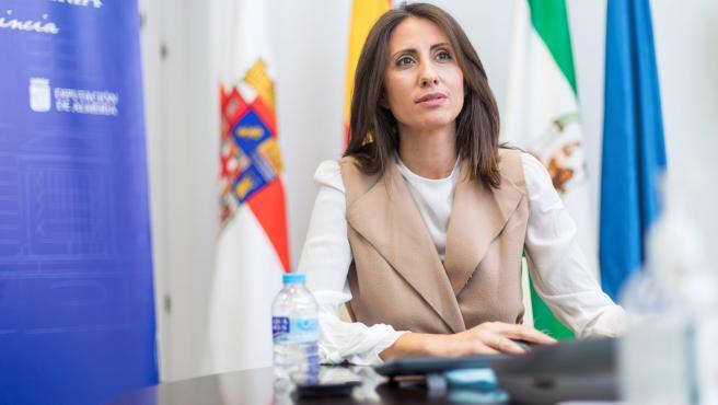 Reunión Telemática Carmen Belén Diputada Delegada Especial de Igualdad y Familia