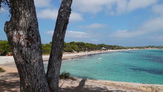 Archivo - Parque Natural de Ses Salines de Ibiza y Formentera
