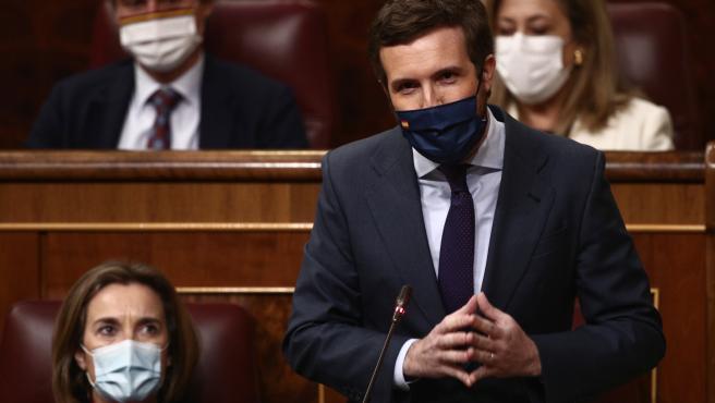 El líder del PP, Pablo Casado, interviene durante una sesión de Control al Gobierno en el Congreso de los Diputados, en Madrid, (España)