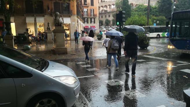 Archivo - Lluvia, Palma, paraguas, tiempo, llover