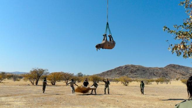Los investigadores simulan las dos posiciones principales durante los traslados en helicóptero.