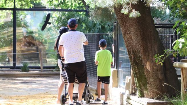 Archivo - Una familia en el Zoo de Jerez en una imagen de archivo