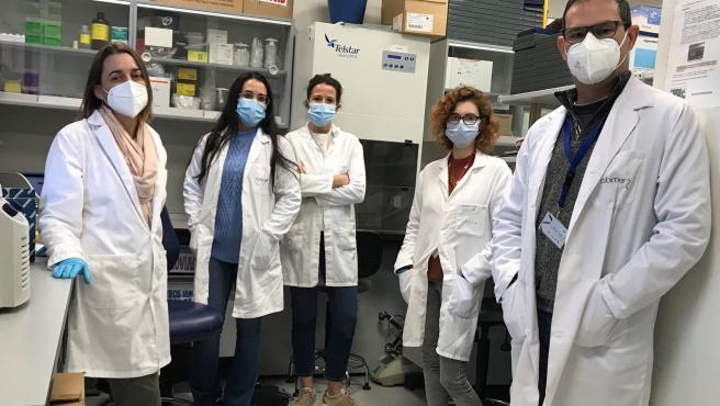 Archivo - Investigadores andaluces hallan un potencial tratamiento para la retinosis pigmentaria