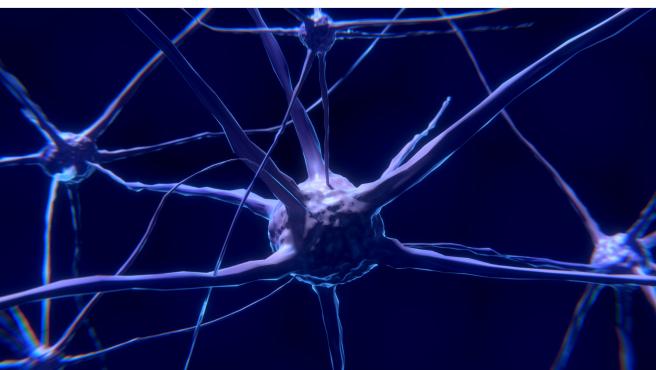 Los campos magnéticos no pueden enfocarse en pequeños grupos de células del cerebro