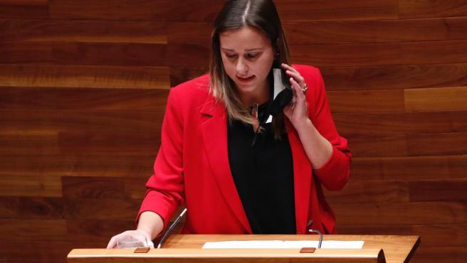 """El PSOE dice que las declaraciones de Mallada (PP) demuestran un """"absoluto desconocimiento"""" del medio rural"""