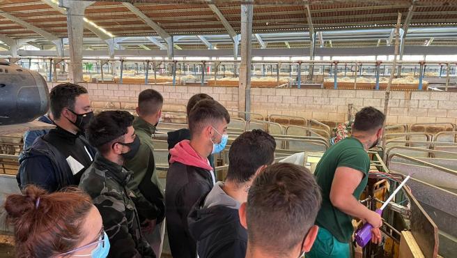 Una decena de jóvenes del medio rural se forman en sacrificio, faenado y despiece animal a través de la Diputación de Cáceres