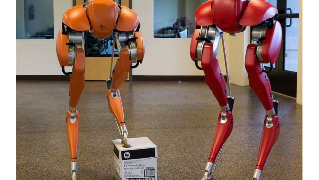 La técnica de entrenamiento se ha realizado mediante la inteligencia artificial.