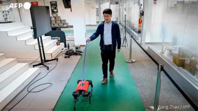 Este robot también se puede pasear, como si se tratase de un perro real.