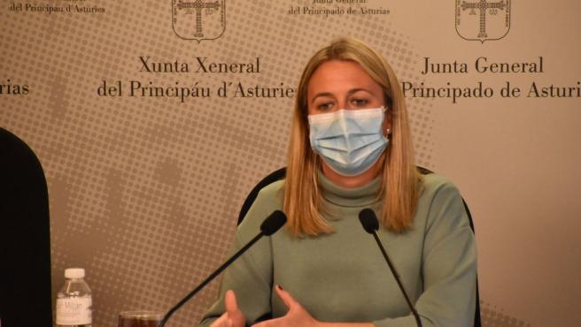 La diputada del PP en la Junta General Reyes Fernández Hurlé