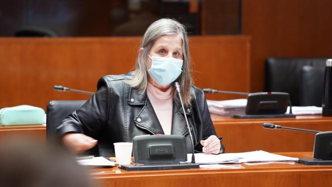 La portavoz de Cs de Institucional y de Desarrollo Institucional en lsa Cortes de Aragón, Beatriz García