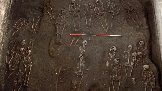 Restos de numerosos individuos desenterrados en el antiguo Hospital de San Juan Evangelista.