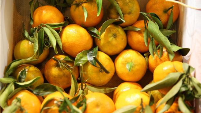 Sucesos.-Detenidas tres personas e investigadas otras tres por 13 robos de naranjas en plantaciones de cítricos