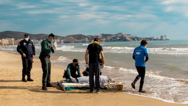Sucesos.- Rescatan a un delfín que se encontraba desorientado en la bahía de Cullera y lo devuelven al mar