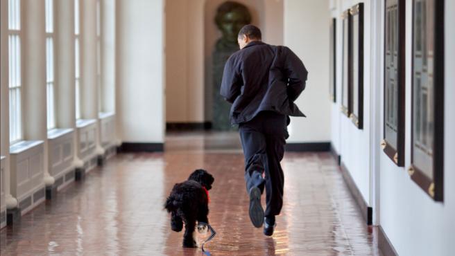 Foto que compartió Barack Obama con su fallecido perro Bo.
