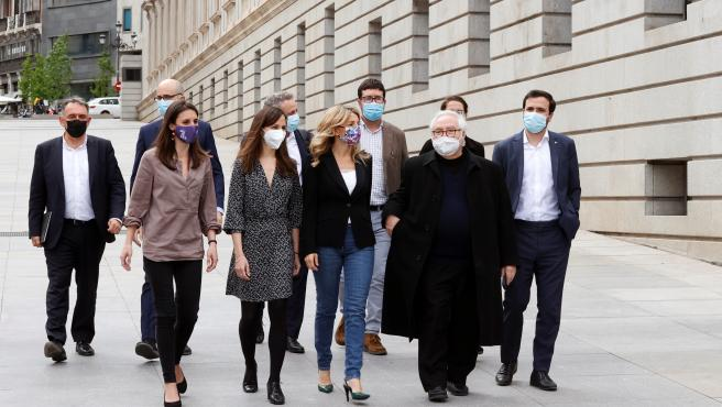 Grupo parlamentario Unidas Podemos