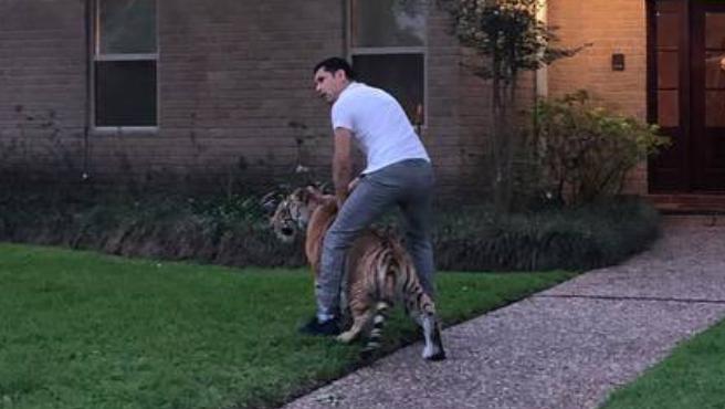 Hugo Cuevas, el supuesto dueño del tigre de Bengala que deambulaba por su barrio.