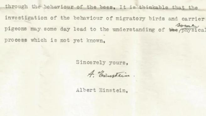 Imagen de la carta inédita de Albert Einstein.