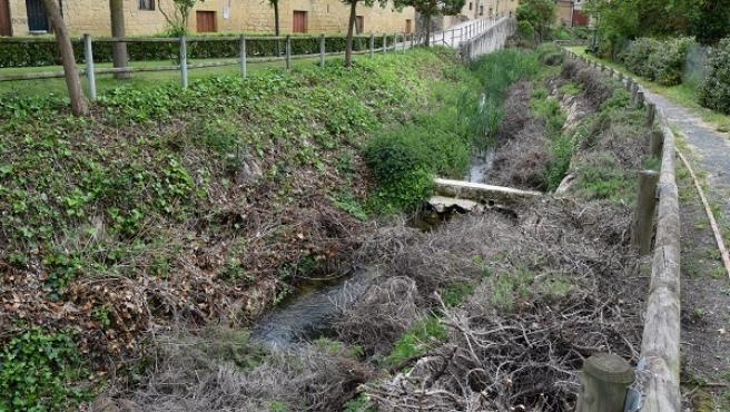 """Amigos de la Tierra critica """"vertidos de restos de poda al río Ea"""" en la localidad riojana de Sajazarra"""