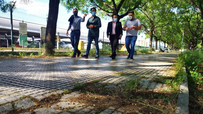 """Ciudadanos denuncia """"graves problemas de limpieza y poda"""" en los alrededores de la estación de Santa Justa"""
