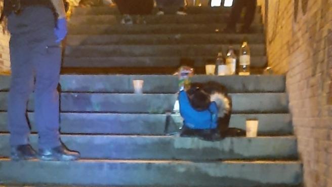 La Policía Foral detiene este fin de semana a cinco personas y controla 11 botellones