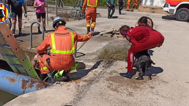 Sucesos.- Rescatan a un hombre y su perro tras caer a una acequia en Riola