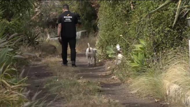 Los agentes de la Guardia Civil registran este lunes por cuarta ocasión la casa de Tomás Gimeno, el padre de Anna y Olivia, las niñas de 1 y 6 años desaparecidas hace casi tres semanas en Tenerife.