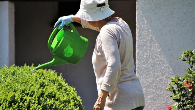 Una mujer riega sus plantas.