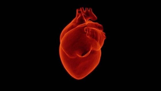 Las enfermedades de los vasos sanguíneos más pequeños del corazón son un importante problema de salud mundial