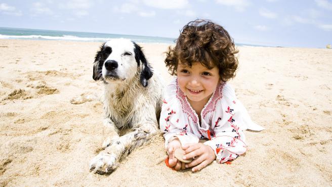 Un perro disfruta de un momento de relax en la playa