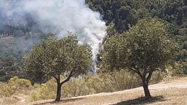 Incendios.- Estabilizado el fuego en un paraje del entorno del río Darro en la capital