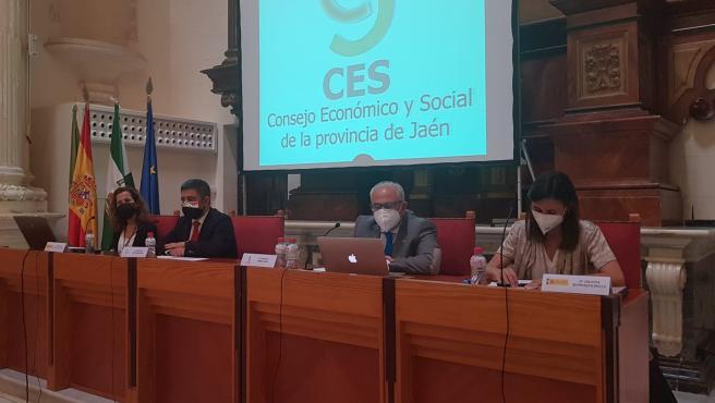 MásJaén.- Reyes participa en un Pleno del CES Provincial dedicado a la ITI y a Fondos Europeos