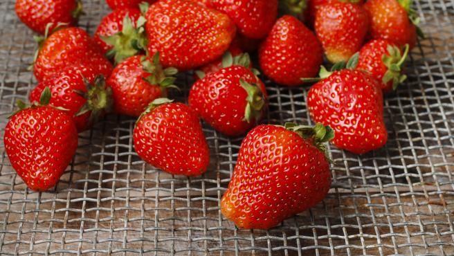 Recolección de fresas en el huerto.