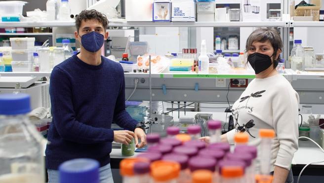 Dos investigadores de la UPNA plantean el uso de bioinsecticidas para combatir la polilla del boj