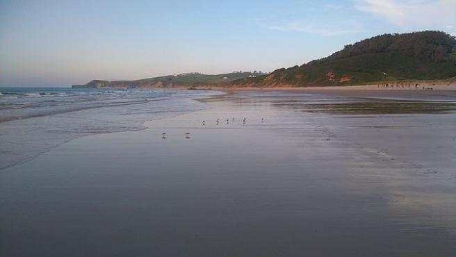 Playa de Oyambre.