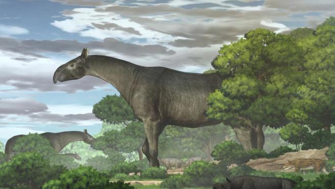 Reconstrucción ecológica de rinos gigantes y su fauna.