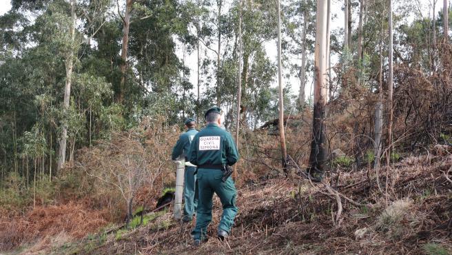 Fiscalía denuncia a un ganadero por el incendio declarado el pasado mes de febrero en Covadonga