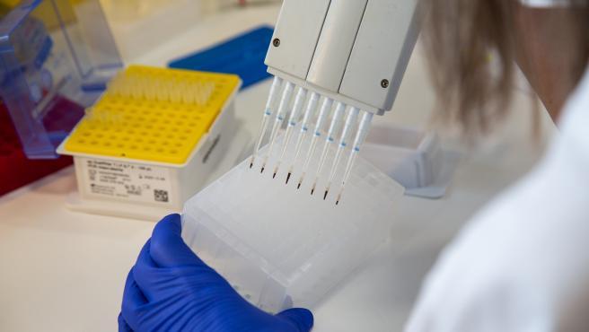 Una investigadora trabaja en el laboratorio de Microbiología del Hospital Universitario de Badajoz en la secuenciación de muestras de coronavirus.