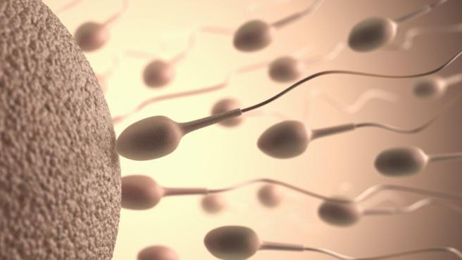 La hipertermia en los testículos puede afectar al esperma y dificultar la concepción.