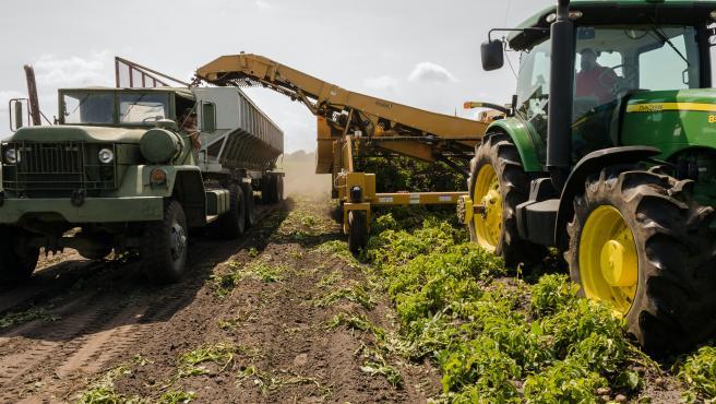 Los agricultores solo se ocuparían de controlar las máquinas.