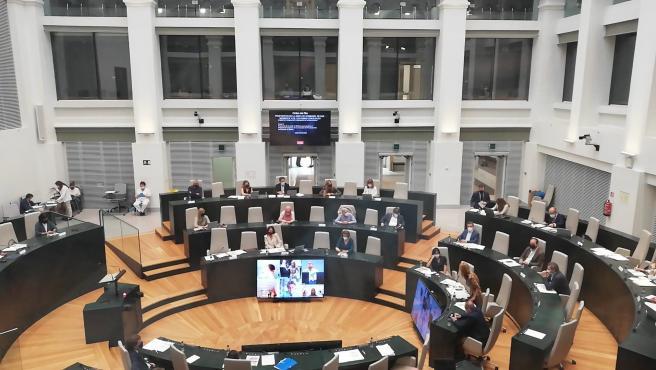 Madrid Central, Telemadrid o Cuba pasarán por el que podría ser el último Pleno en Cibeles antes del parón estival