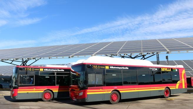 Tussam aprueba licitar un acuerdo marco destinado a comprar 41 buses híbridos de gas natural en cuatro años